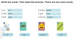 Answers Danger Bugs! P70 e1